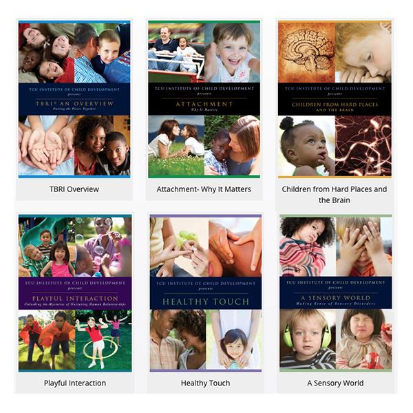 Healing Families DVD Series